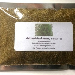 Artemisia Annua (Sweet Annie), Herbal Tea