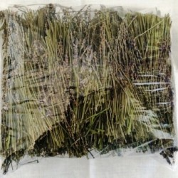 Lavender Straw, 1 lb bag