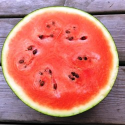 Watermelon Sugar Baby, seeds