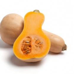 Pumpkin Butternut, Winter Squash seeds