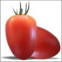 Amish Oxheart,   Heirloom tomato seeds, Organic