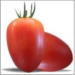 Tomato Amish Oxheart,   Heirloom seeds
